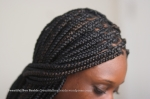 Poetic Justice Box Braids